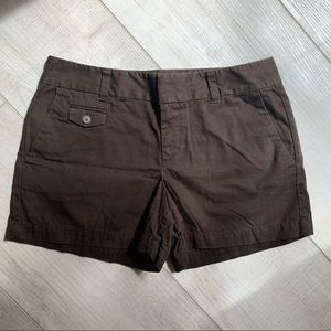 Dark Brown LOFT Shorts